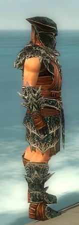 File:Warrior Luxon Armor M gray side.jpg