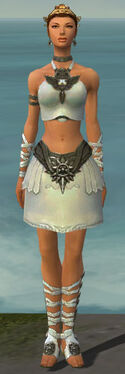 Paragon Istani Armor F gray front