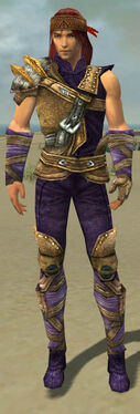Ranger Tyrian Armor M dyed front