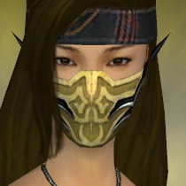 File:Assassin Elite Luxon Armor F dyed head front.jpg