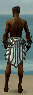 Paragon Primeval Armor M gray arms legs back