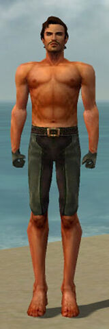 File:Mesmer Ancient Armor M gray arms legs front.jpg