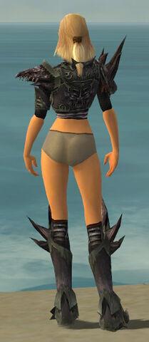 File:Warrior Primeval Armor F gray chest feet back.jpg