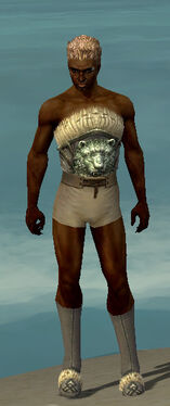 Dervish Norn Armor M gray chest feet front