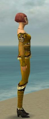 File:Mesmer Luxon Armor F dyed side.jpg