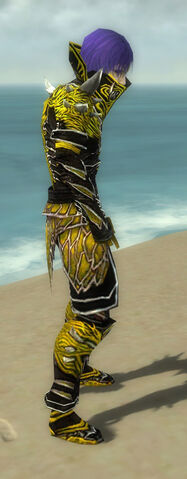 File:Necromancer Elite Luxon Armor M dyed side.jpg