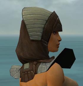 File:Dervish Ancient Armor F gray head side.jpg