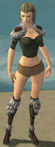 File:Ranger Elite Fur-Lined Armor F gray chest feet front.jpg