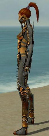 File:Assassin Elite Exotic Armor F gray side.jpg