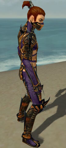 File:Assassin Elite Exotic Armor M dyed side.jpg