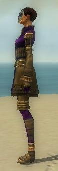 File:Mesmer Ancient Armor F dyed side.jpg