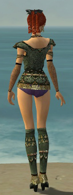 File:Mesmer Elite Luxon Armor F gray chest feet back.jpg