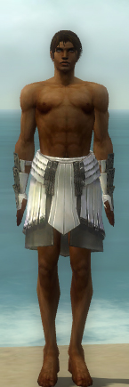 File:Paragon Ancient Armor M gray arms legs front.jpg