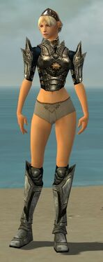 Warrior Elite Sunspear Armor F gray chest feet front