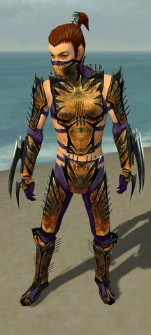 File:Assassin Elite Exotic Armor M dyed front.jpg