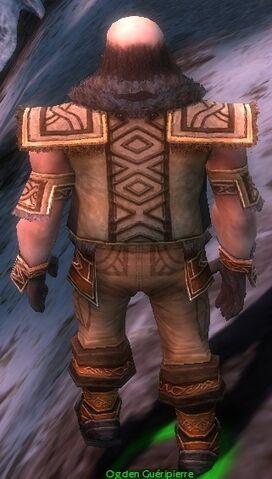 File:Ogden Stonehealer Armor Deldrimor Back.jpg