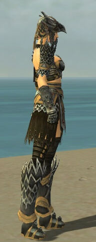 File:Warrior Silver Eagle Armor F dyed side alternate.jpg