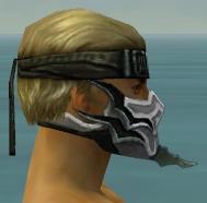 File:Assassin Elite Luxon Armor M dyed head side.jpg