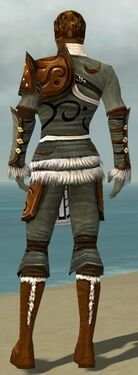 Ranger Canthan Armor M gray back