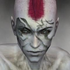 File:Necromancer Kurzick Armor M gray head front.jpg
