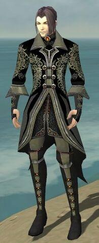 File:Elementalist Elite Kurzick Armor M gray front.jpg