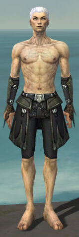 File:Necromancer Cabal Armor M gray arms legs front.jpg
