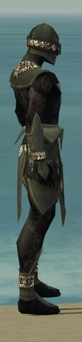 File:Ritualist Kurzick Armor M gray side alternate.jpg
