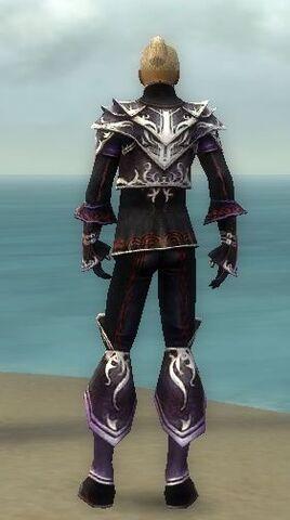 File:Elementalist Deldrimor Armor M dyed back.jpg