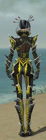 File:Necromancer Elite Kurzick Armor F dyed back.jpg