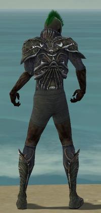 File:Necromancer Elite Necrotic Armor M gray chest feet back.jpg