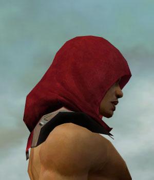 File:Dervish Istani Armor M dyed head side.jpg