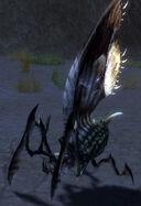 Juvenile Bladed Termite