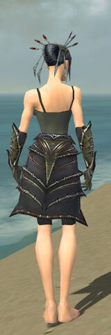 File:Necromancer Elite Necrotic Armor F gray arms legs back.jpg