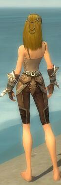 Ranger Asuran Armor F gray arms legs back