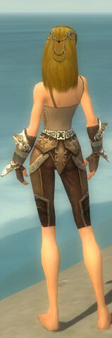 File:Ranger Asuran Armor F gray arms legs back.jpg