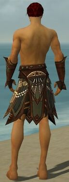 Ritualist Monument Armor M gray arms legs back