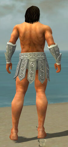 File:Warrior Ascalon Armor M gray arms legs back.jpg