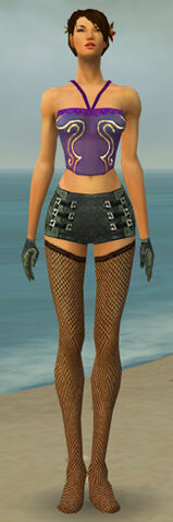 File:Mesmer Kurzick Armor F gray arms legs front.jpg