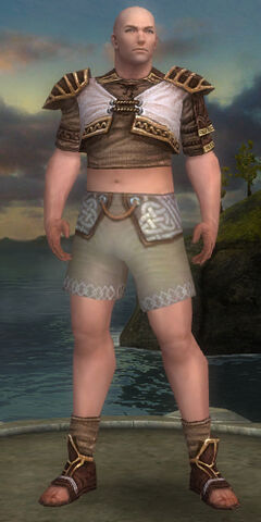 File:Monk Elite Canthan Armor M gray chest feet front.jpg