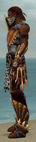 File:Ranger Elite Sunspear Armor M dyed side.jpg