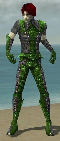 File:Necromancer Ascalon Armor M dyed front.jpg
