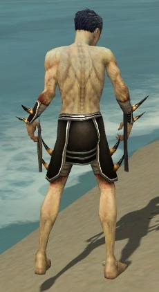 File:Necromancer Ancient Armor M gray arms legs back.jpg