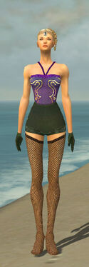 Mesmer Courtly Armor F gray arms legs front