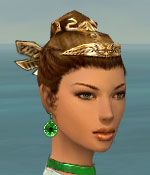 File:Paragon Istani Armor F dyed earrings.jpg