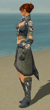 Elementalist Elite Stoneforged Armor F gray side