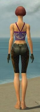 Mesmer Ancient Armor F gray arms legs back