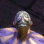 File:Monk Elite Canthan Armor M gray head back.jpg