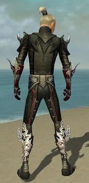 Assassin Deldrimor Armor M gray back