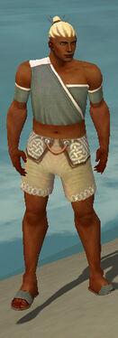 Monk Ascalon Armor M gray chest feet front