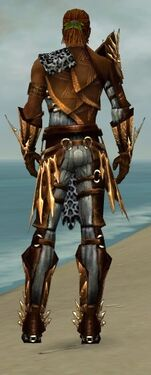 Ranger Elite Sunspear Armor M dyed back